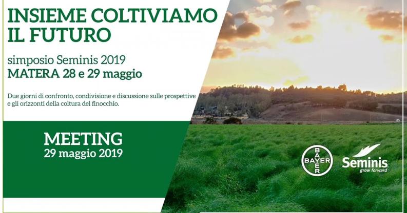 seminis-intervento-foen-matera-2019