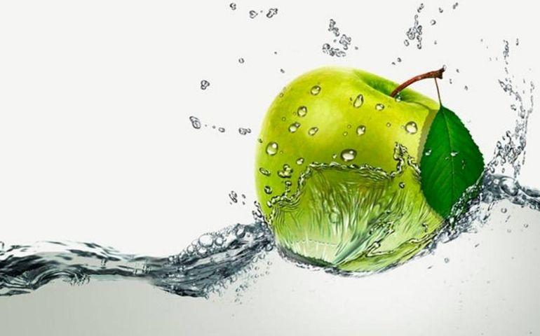 Cellule staminali vegetali contro l'invecchiamento cutaneo: scopriamo di più